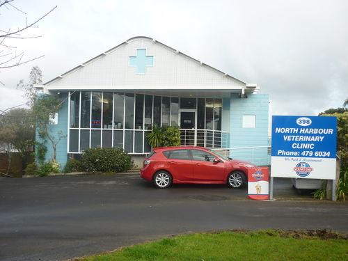 North Harbour Veterinary Clinic Mairangi Bay Localist