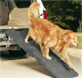 Doggie ramps and grooming products
