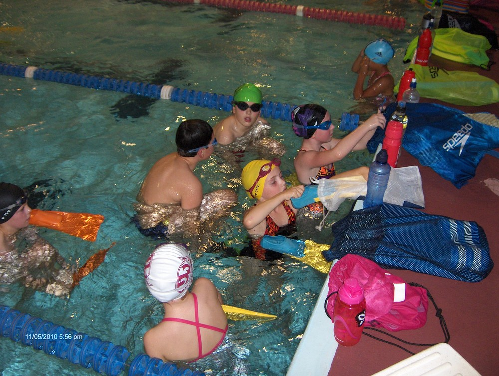 Waterhole swimming club glen eden localist - Swimming pool maintenance auckland ...