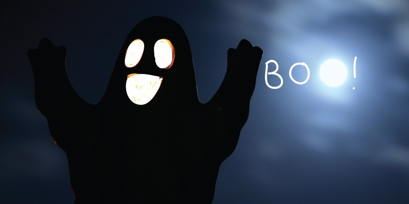 82c192f9a8a Best places to shop for Halloween in Wellington