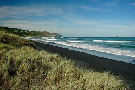 Beaches Near Manurewa
