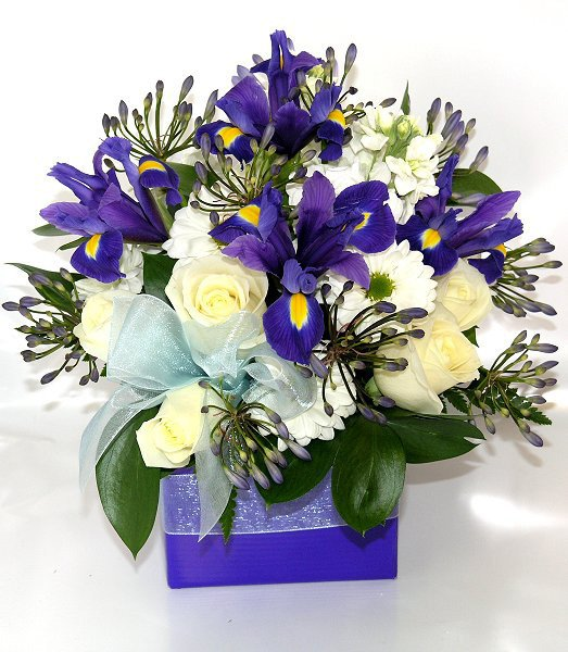 Blue, White and Cream Flower Arrangement - Flower Delivery Auckland & NZ Wide