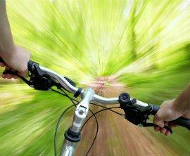 Scarface Mountain Bike Trails, Thames • Localist