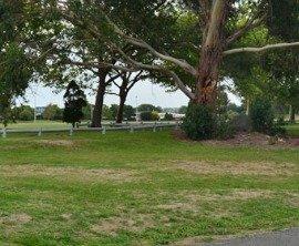 Feilding park
