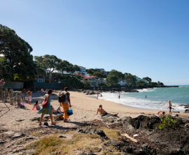 Summery day on the shore in auckland localist for 3 kitchener road takapuna